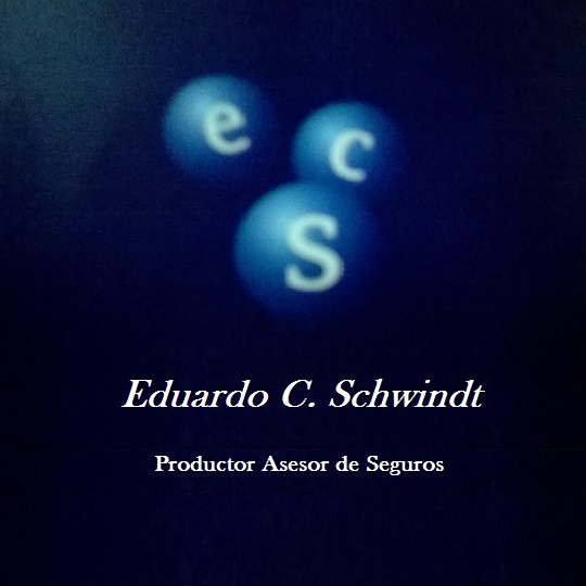 Eduardo C. Schwindt