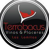 Terrabacus
